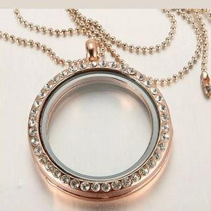 LIVING MEMORY LOCKET for  Floating charms